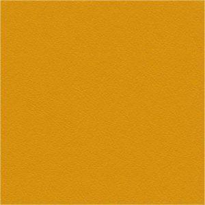 Cori mustard