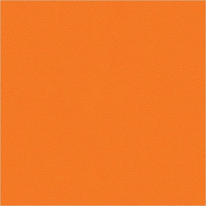 Paloma clementine