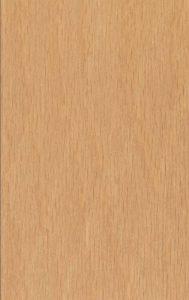 Oak beech wood
