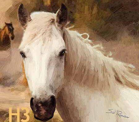 A good man, a good horse