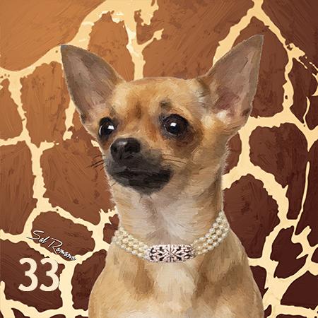 Tan Chihuahua