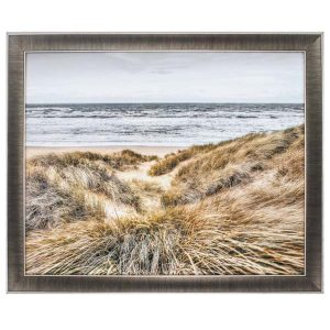 beach dunes propac images