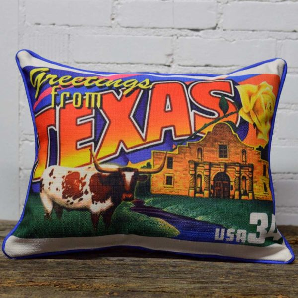 little birdie state postcard pillows